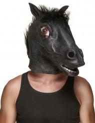 Sort hestehoved maske af Latex Voksen
