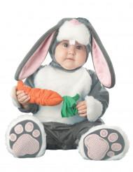 Kostume kanin til babyer- Premium