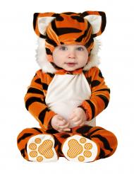 Kostume tiger til babyer - klassisk