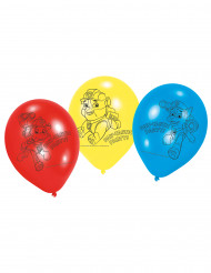 6 balloner i latex Paw Patrol