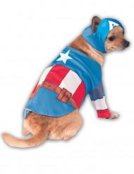 Hundekostume Captain America™