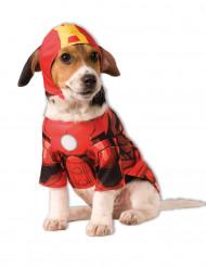 Hundekostume Iron Man™