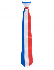 Frankrig trefarvet slips