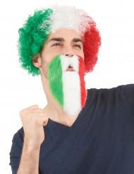 Skæg, italiensk fan voksen