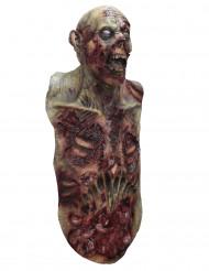 Zombie maske og bryst til Halloween