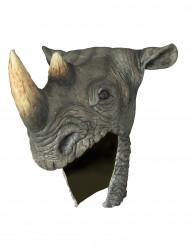 Næsehorn hjelm Voksen