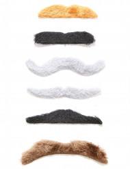 Samling af 6 selvklæbende overskæg til voksne
