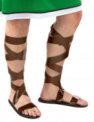 Romerske sandaler brune til voksne