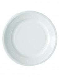 50 hvide plastiktallerkener 22 cm