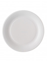 100 Hvide paptallerkener bionedbrydelige 23 cm
