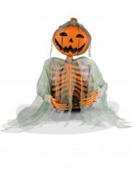 Dekoration skelet græskar 52 cm Halloween