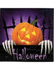 20 Servietter med græskar Halloween