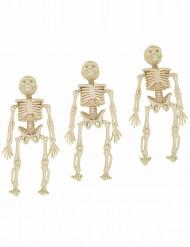 3 hængende skeletter