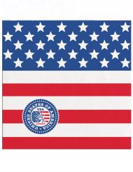 Små servietter USA