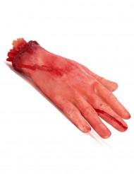 Afskåret hånd med blod - Halloween dekoration