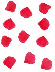 150 røde blomsterblade