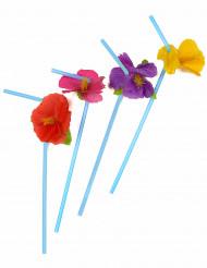 12 blomstersugerør Hawaii