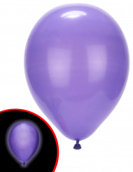 5 ballonner med LED lilla Illooms ®