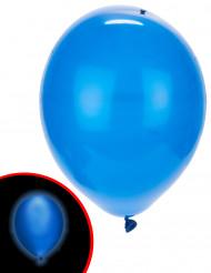 5 LED balloner blå Illooms®