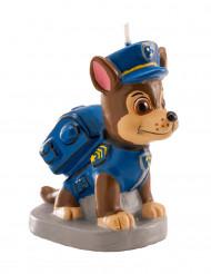 Lys Paw Patrol™ Chase
