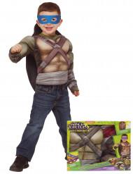 Kostume luksus Ninja Turtles™ muskuløst med skjold