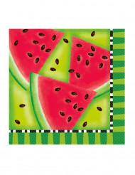 Servietter 16 stk vandmelon