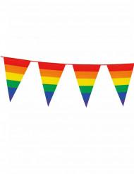 Guirlande vimpel regnbue 8 m
