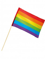 Regnbue flag 30 x 45 cm