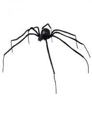Sort edderkop 110 cm Halloween