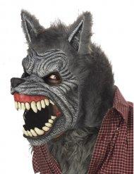 Ani-motion™ varulv maske - voksen
