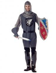 Ridder ringbrynje kostume mand