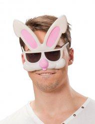 Briller sjov kanin til voksne