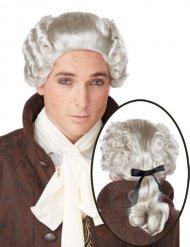 Paryk grå adelig barok til mænd
