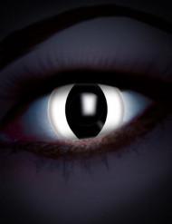 UV linser slange øje hvid til voksne