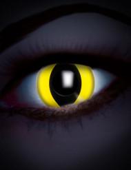 UV linser slange øje gul til voksne