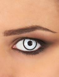 Falske kontaktlinser i hvad og sort - Til voksne