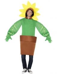 Kostume solsikke i en potte til voksne