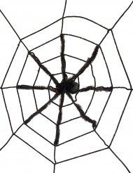 Sort spindelvæv med gigantisk edderkop 130 cm