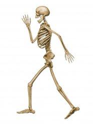 Dekoration skelet gående Halloween beige 94 cm