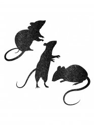 Sorte glimmer mus - Vinduesdekoration