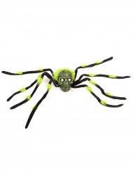 Kæmpe edderkop med sorte og grønne ben 70 cm