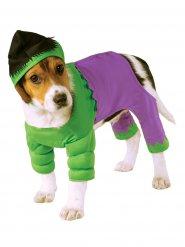 Kostume til hunde Hulk™