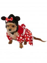 Kostume til hunde Minnie Mouse™