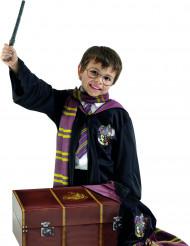 Kuffert med kostumer Harry Potter™ til børn