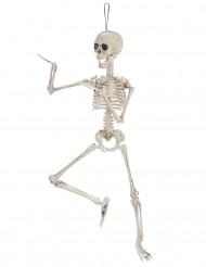 Dekoration skelet 48 cm