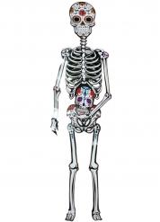Dia de los Muertos skelet i pap