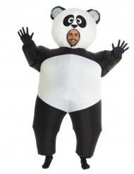 Kostume oppusteligt panda til voksne Morphsuits™
