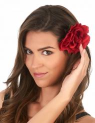 Rød rose til voksne