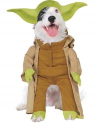 Kostume til hunde Mester Yoda™
