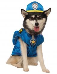 Hundekostume Paw Patrol™